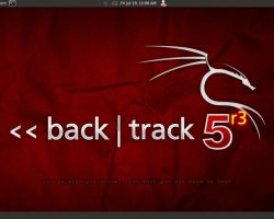 How To Install Backtrack & Hack Wifi On Android 10
