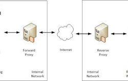 Differences Between (Forward) Proxy and Reverse Proxy 6
