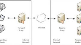 Differences Between (Forward) Proxy and Reverse Proxy 1