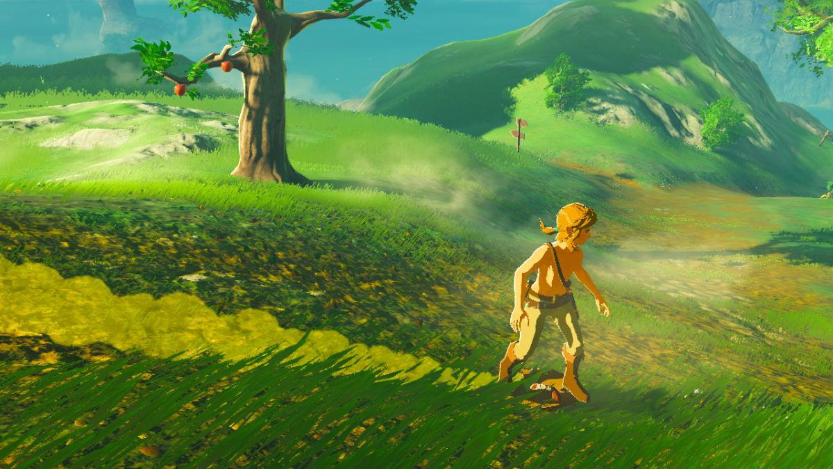 Someone beat Breath of the Wild without walking once, because reasons