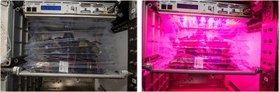 Microbiological and Nutritional Analysis of Lettuce Crops Grown on the International Space Station