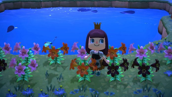 Animal Crossing: New Horizons Hybrid Flowers Guide –