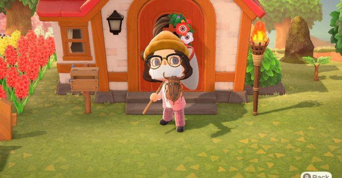 Animal Crossing: New Horizons' tarantula island is broken