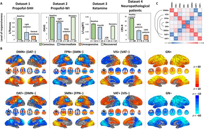 Temporal circuit of macroscale dynamic brain activity supports human consciousness