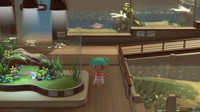 A Real-Life Aquarium Is Streaming Educational Tours Of Animal Crossing: New Horizons' Museum